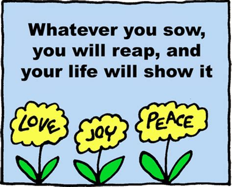 As you sow shall you reap essay png 400x324